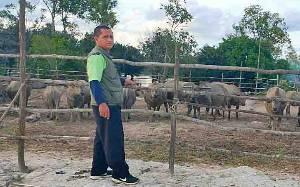 BPP Paju Epat Verifikasi Populasi Kerbau Rawa di Desa Telang Baru