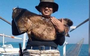 KKP-NTB Bertekad Raih Sertifikasi Eco-label Internasional Kakap-kerapu