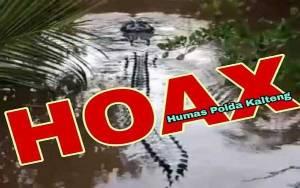 Informasi Ada Buaya Muncul di Hanga Samba Kahayan Adalah Hoax