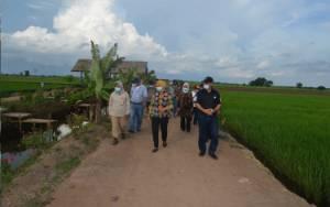 Dirjen Bangda Kemendagri Kunjungi Kalteng Monitor Kegiatan Food Estate