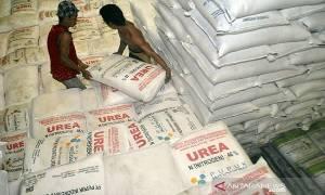 Anggota DPR Nilai Sangat Penting Evaluasi Penyaluran Pupuk Bersubsidi