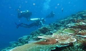 KKP: Luas Konservasi Perairan Indonesia Capai 23,91 Juta Hektare