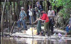 BKSDA Pasang 2 Jerat Buaya dan 4 Papan Lokasi Serangan Buaya Desa Pelangsian