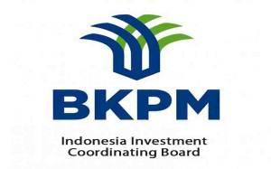 BKPM Wajibkan Investor Besar Bermitra dengan UMKM