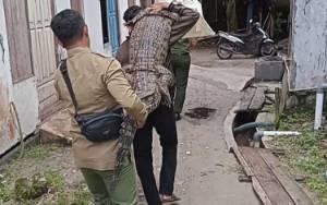 Video Petugas BKSDA Gendong Buaya