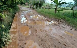Jalan Penghubung Desa Pinang Tunggal dan Bararawa Banyak Kubangan