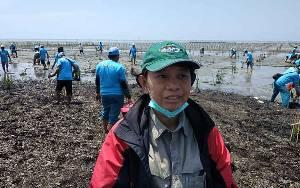 Balai TNTP Dukung Pemulihan Ekosistem Mangrove di Pesisir Seruyan