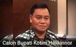 Video Pernyataan Halikinnor Usai Putusan MK soal Sengketa Pilkada