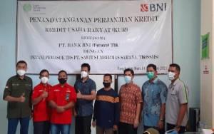Video Penandatangan Akad Kredit Mitra Swadaya Plasma Binaan PT. SSMS Bersama BNI