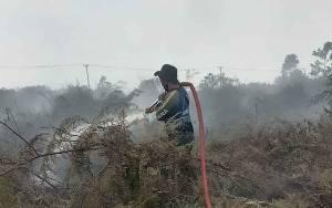 60 Hektare Lahan Terbakar, Tim Penanganan Bakal Bangun Sekat dan Embung di Lokasi Karhutla