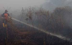2 Anggota Kelompok Tani Diperiksa Polisi karena Lahannya Terbakar