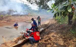 Karhutla Mulai Meningkat, Satgas Darat Terus Berjibaku Padamkan Api