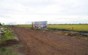 Riau Siapkan Food Estate Seluas 30 Ribu Hektare, Tunggu Survei Kementan