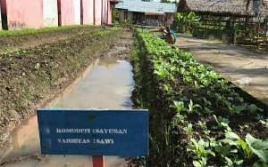 Rutan Kuala Kapuas Manfaatkan Lahan Kosong untuk Ditanami Sayuran