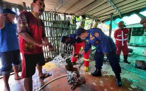 Geger, Gas 3 Kg Bocor Keluarkan Api Saat Ibu - Ibu Masak untuk Acara Pernikahan