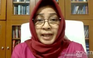 Guru Besar Politik UI Usul MPR Bentuk Komisi Awasi Pembentukan UU