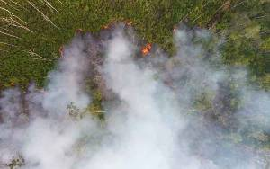Hutan Terbakar di Perbatasan Tasik Payawan dengan Kamipang