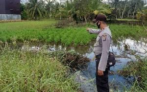 Polsek Kapuas Kuala Monitoring Lahan Pertanian Warga, Ini Tujuannya