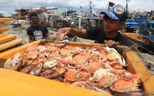 KKP Ingatkan Pelaku Usaha Tingkatkan Mutu Ekspor Perikanan