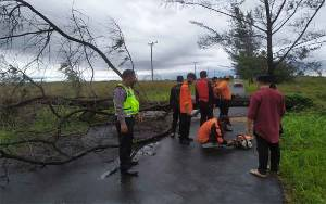 Pohon Tumbang Tutup Jalan Kuala Pembuang - Ujung Pandaran