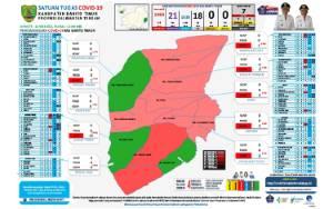 Update Covid-19 Barito Timur, 10 Sembuh dan 2 Positif