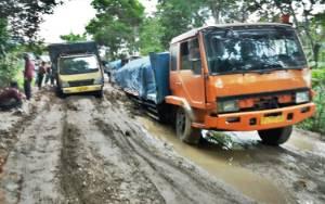 Ruas Jalan Rusak di Kalteng Perlu Segera Diperbaiki