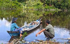 Buaya di Sungai Cempaga Sering Muncul pada Malam Hari