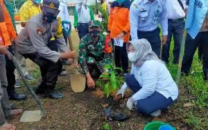 Peringati Hari Lingkungan, Bupati Kobar Tanam Pohon