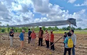 DKPPP Barito Selatan Cek Lokasi Rencana Pengembangan Food Estate di Desa Rantau Bahuang