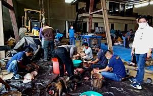Dinas PUPR Barito Utara Bagikan 6 Ekor Daging Hewan Kurban