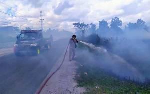 Potensi Kebakaran Hutan dan Lahan di Kotim Tinggi
