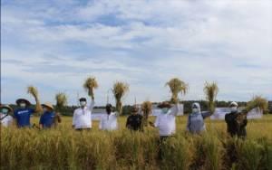 TaniFund Gandeng AGRO Luncurkan Pendanaan Usaha Mikro