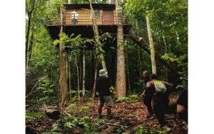 Bupati Pulang Pisau Ingin Hutan Adat Tangkahen Jadi Ekowisata