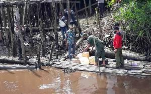 Waspada! Warga Laporkan Kemunculan Buaya di Desa Jaya Karet