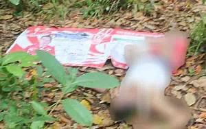 Pria 56 Tahun Ditemukan Tewas di Kebun Karet Barito Timur
