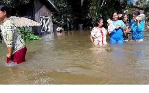 Penebangan Pohon Tanpa Kajian Jadi Salah Satu Penyebab Banjir