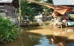 Ribuan Rumah di Barito Selatan Terdampak Banjir