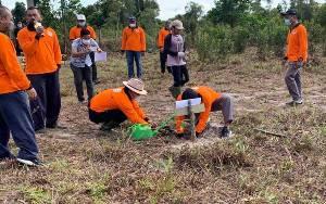 DLH Sukamara Tanam 1000 Pohon Peringati Hari Ozon Sedunia