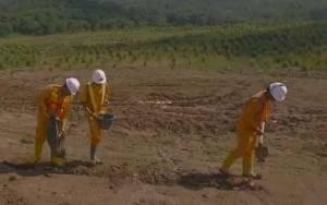 Anggota DPRD Kalteng Ingatkan PBS Supaya Reklamasi Lahan yang Gundul