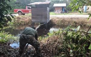 Awas, Diperkirakan Ada Lebih 3 Ekor Buaya Berkeliaran di Sungai Sapihan