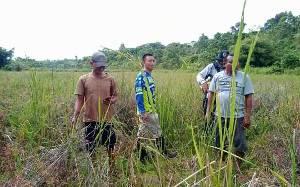 DPRD Kalteng: Potensi Pertanian di Daerah Perlu Digali dengan Maksimal