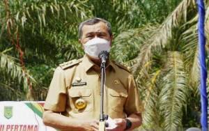 Gubernur Riau Tunjuk Suhardiman Amby sebagai Plt Bupati Kuansing