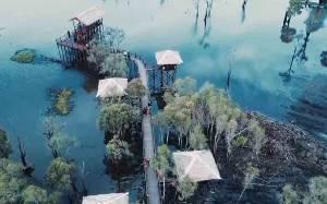 Menengok Keindahan Wisata Alam Teluk Sebongkok