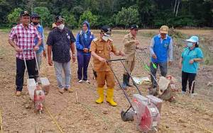 Wakil Bupati Barito Timur Hadiri Tanam Jagung di Desa Malintut